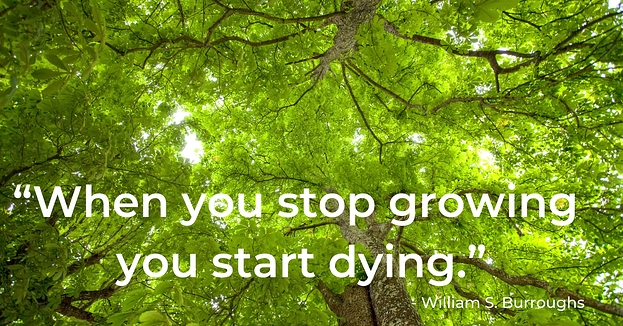 green-tree-canopy-quote-growing-dying-william-s-burroughs