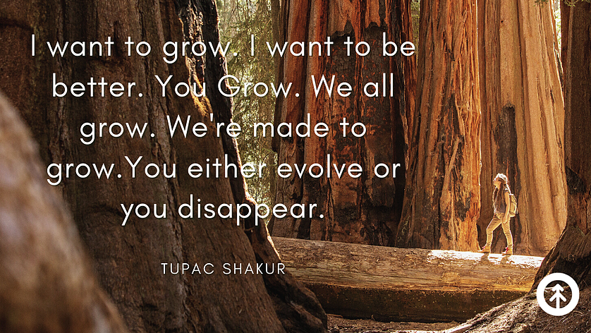 """A hiker standing on a fallen log and looking up at the redwood forest canopy with words about growth and evolution from rapper and poet Tupac Shakur: """"I want to grow. I want to be better. You grow. We all grow. We're made to grow. You either evolve or you disappear."""" ."""