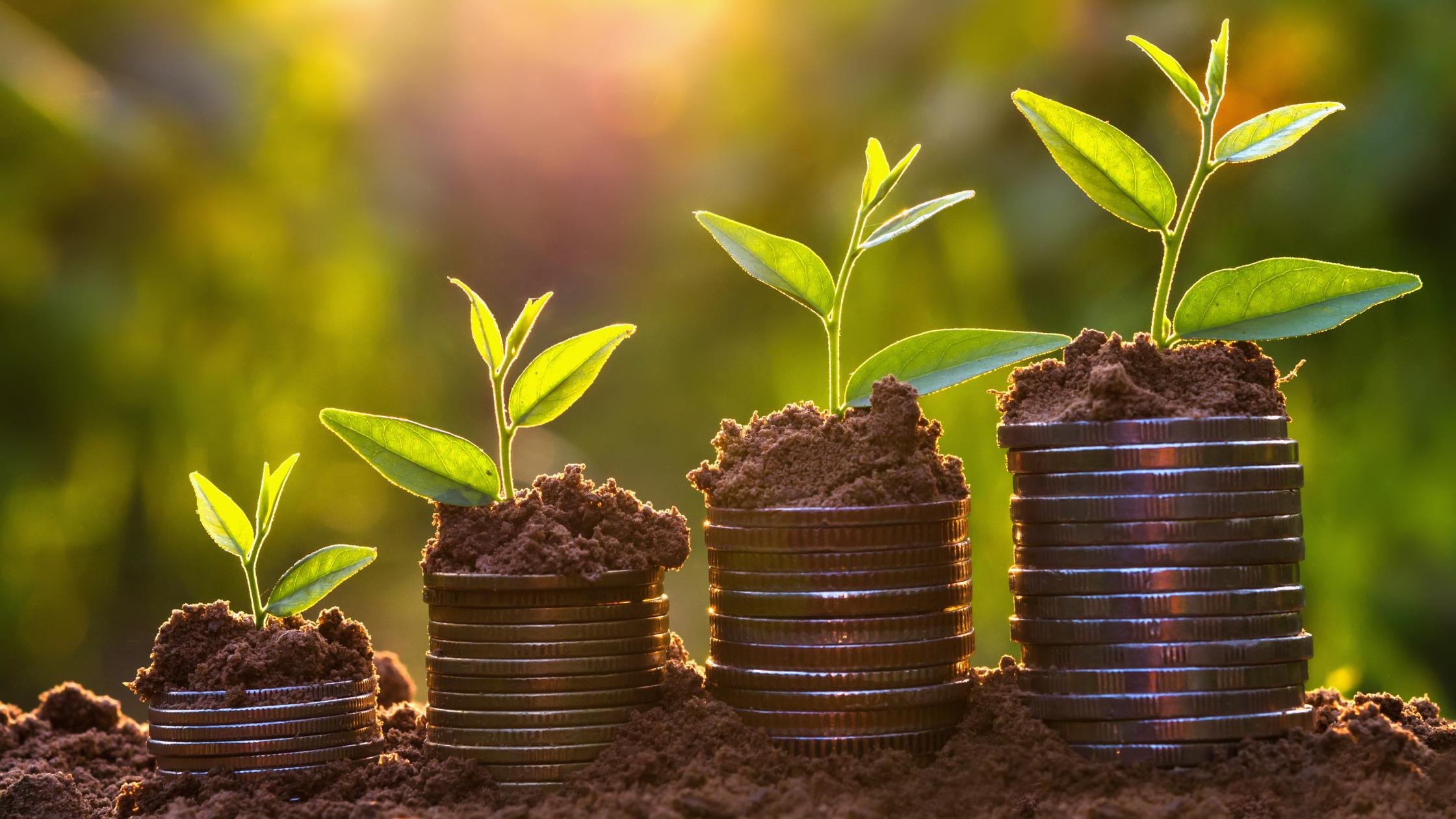Drive Revenue Through Sales Pipeline Management